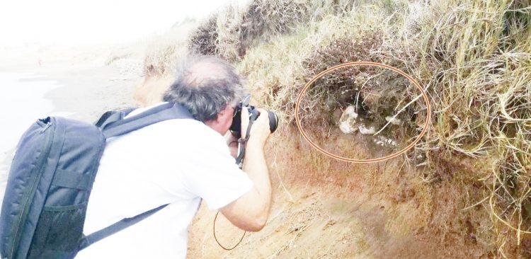 Ladispoli, un 'nuovo' scheletro sulla spiaggia