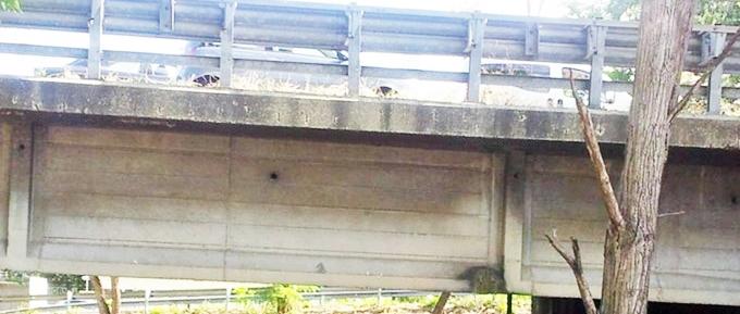 """""""Viadotto a rischio crollo"""""""