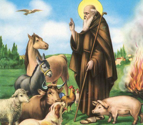 Sant'Antonio, in collina una settimana di eventi