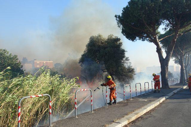 Emergenza incendi, interrogazione urgente di Piendibene, De Paolis e Scilipoti