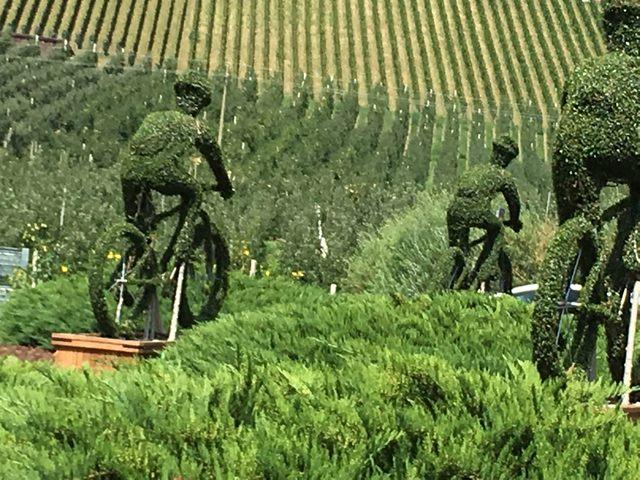 Ciclisti in erba (foto Adalberto Bencini)