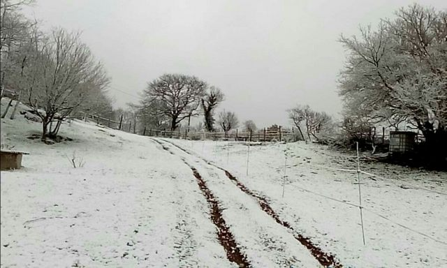 Neve, stamane, anche a Tolfa