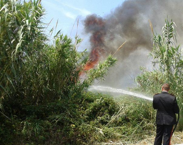Vasto incendio nella zona nord di Santa Marinella: A12 invasa dal fumo