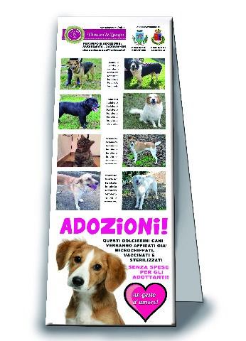 Animali, Cerveteri e Ladispoli in prima linea per le adozioni