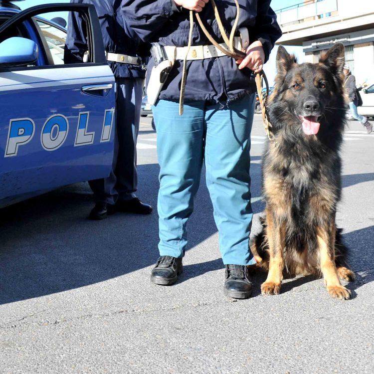 Ladispoli, cane poliziotto salva anziano malato