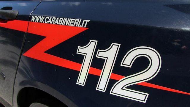 Montalto, ladri di pigne nella rete dei Carabinieri