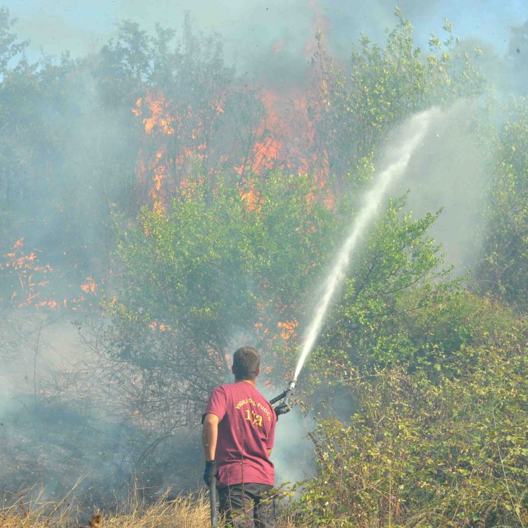 Incendio doloso a Montalto: una denuncia
