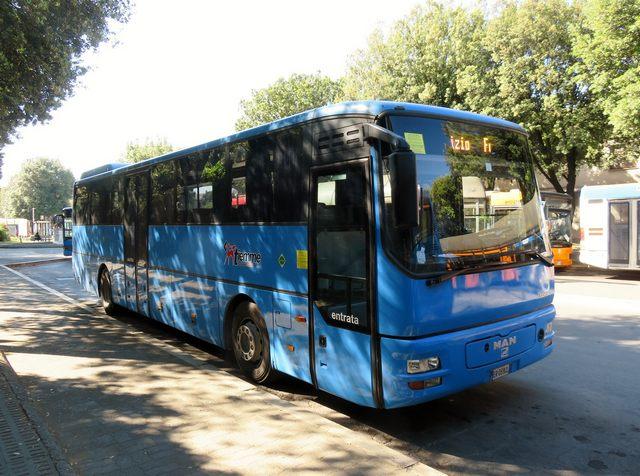 Trasporto scolastico gratuito, a Montalto garantito anche il collegamento con la Toscana