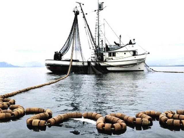 Flag, un piano di sviluppo per la pesca