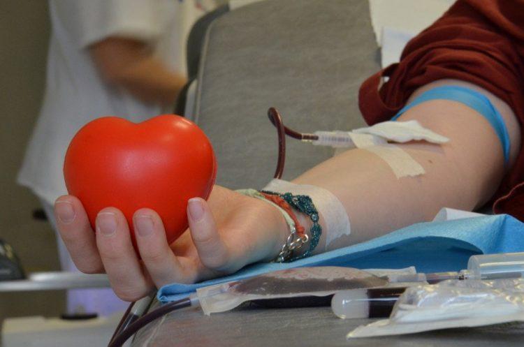 All'istituto ''Di Vittorio'' la donazione di sangue per il Bambino Gesù