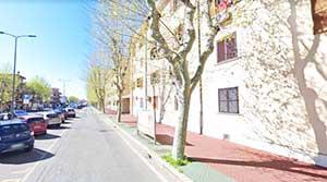 Al via le potature degli alberi in centro città e a via Copenaghen