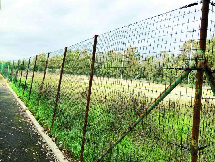 Un campo per 25 anni a soli 5 euro l'anno. È l'affare della Csl Soccer pronta a investire