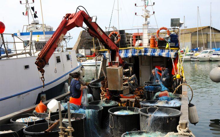 Pescatori civitavecchiesi in prima linea per le famiglie più bisognose