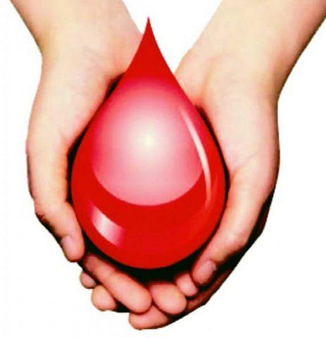 Appello Avis: Urge sangue zero positivo e negativo