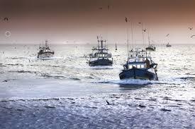 Coldiretti, il Coronavirus 'affonda la pesca'