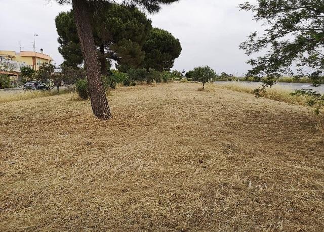 CSP, spazzamento e sfalcio del verde per ripulire la città