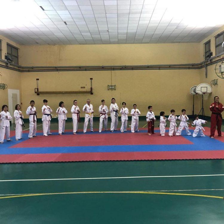 Taekwondo Civitavecchia, allenamenti online per gli atleti