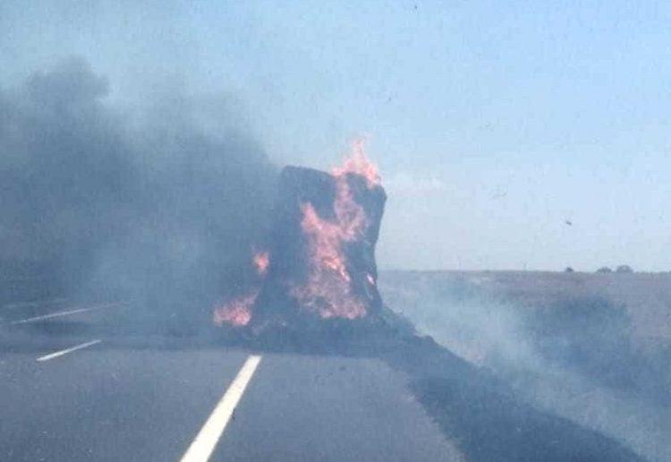 A12, in fiamme camion carico di grano: lunghe code tra Santa Marinella e Cerveteri