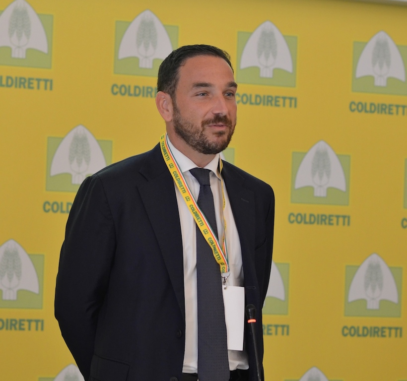 """Coldiretti Lazio: """"Calo nella vendita di olio extravergine dell'80%"""""""