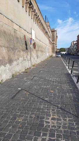 CSP ancora all'opera con spazzamento, diserbo e sfalcio in città