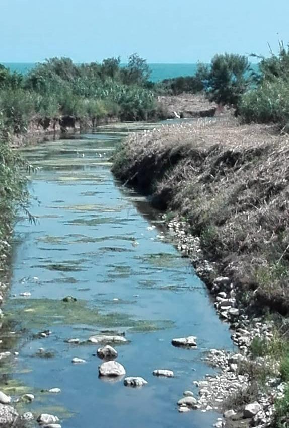 «Bloccati i lavori di messa in sicurezza del fosso Castelsecco»
