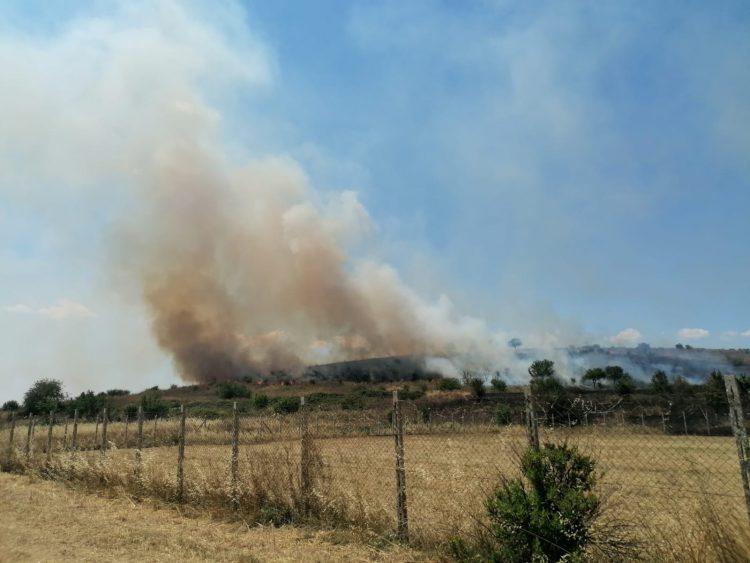 Gruppo di Protezione civile Civitavecchia in campo anche contro gli incendi