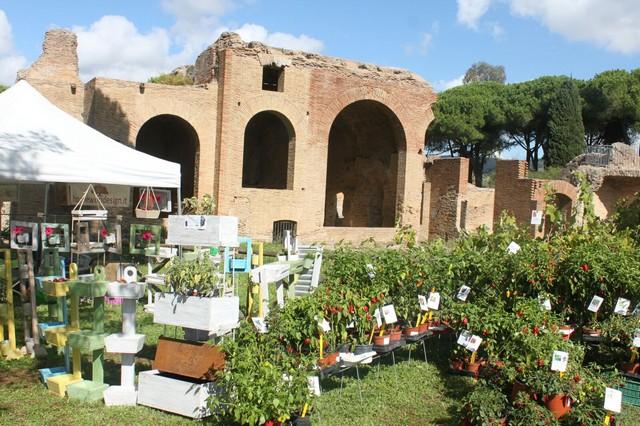 Terme in fiore torna a Civitavecchia con la sua ottava edizione