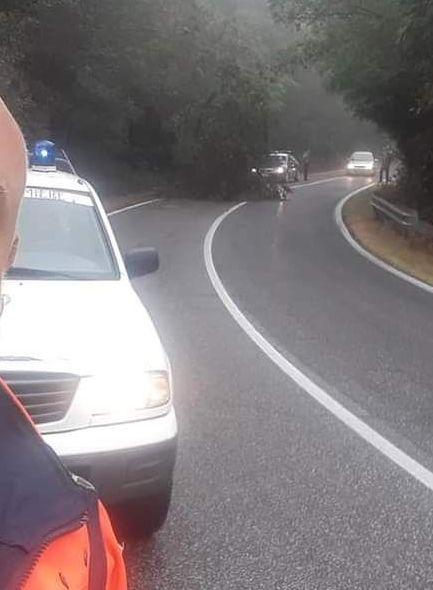 Albero caduto sulla Braccianese: intervento di Vigili del fuoco,  Prociv e carabinieri