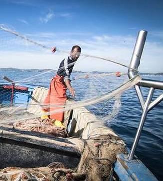 «Le ordinanze a tempo massacrano i pescatori»
