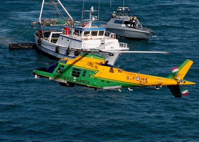 Gdf, il Roan sequestra 1.200 ricci di mare. Multa di 12.000 euro al pescatore di frodo