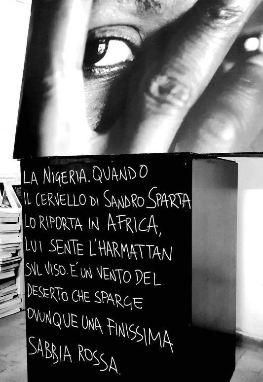 """""""Roma giungla"""": il romanzo noir     di Saladini e Lucidi affascina il pubblico"""