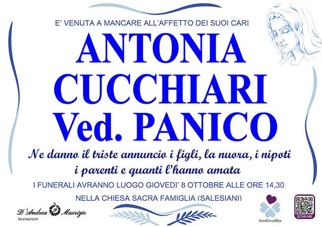 ANTONIA CUCCHIARI ved. PANICO
