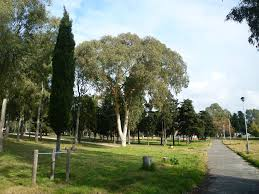 """Elena De Paolis: """"Spigarelli, parco senza barriere architettoniche"""""""