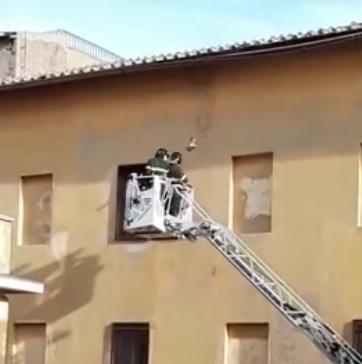 Piccione salvato dai vigili del fuoco alle carcerette