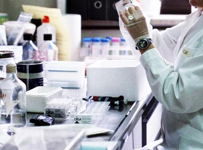 L'immunoterapia     allunga la sopravvivenza