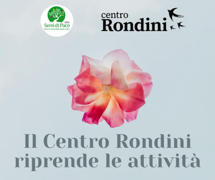 Semi di pace, riapre il centro Rondini per l'ascolto psicologico e l'assistenza legale