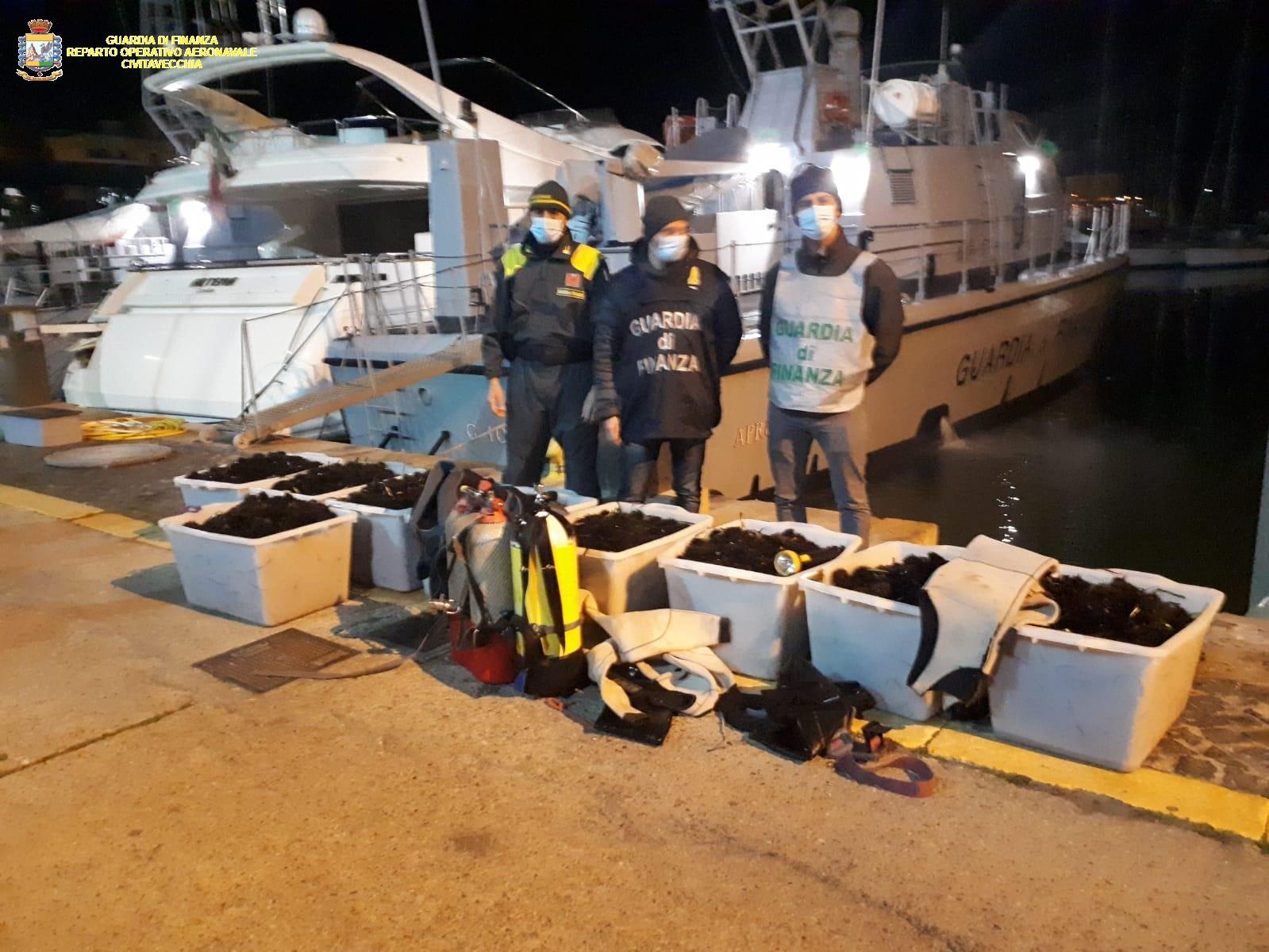 """Operazione """"Dark Sea"""": pescatori di frodo nella rete della stazione navale della Gdf di Civitavecchia"""