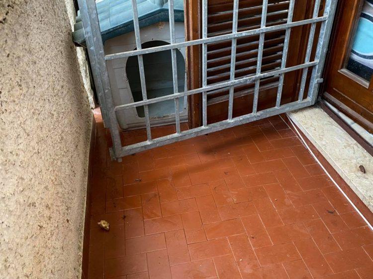 Lasciava il cane in un balcone di 4 metri quadri pieno di urina stantia: sanzionata