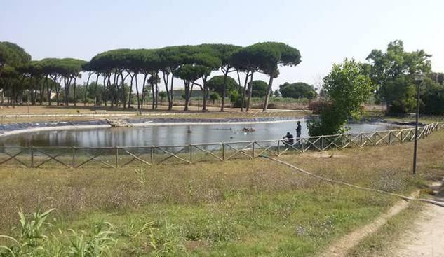 130mila euro per la manutenzione di parchi e aree verdi