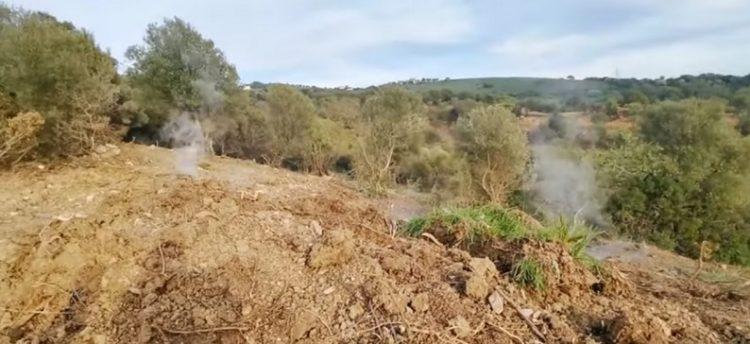 Lavori Agraria, la Regione risponde a Magliani:     la prossima settimana ricognizione sul posto
