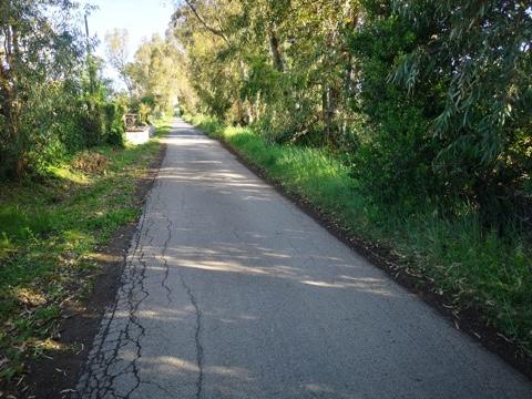 Via di Torrevaldaliga: tornano a transitare i mezzi del tpl