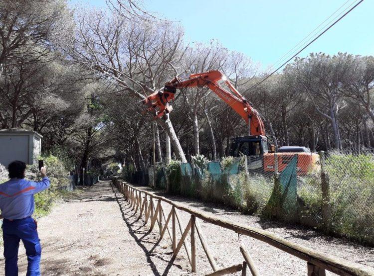 Agraria Tarquinia, subito riaperta la strada adiacente il campeggio: garantito l'accesso al mare
