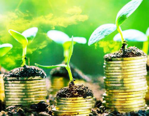 B Corp e società benefit, l'Italia supera quota mille