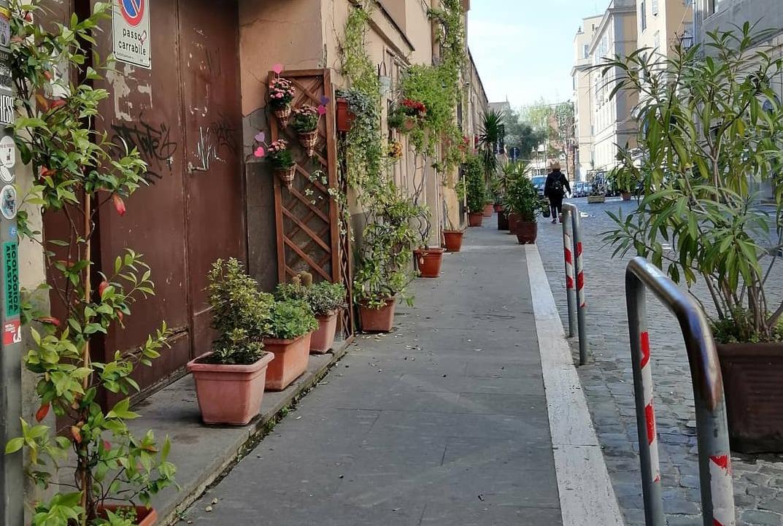 Centro storico, esplosione di colori     con piante e fiori per ridare vita all'area