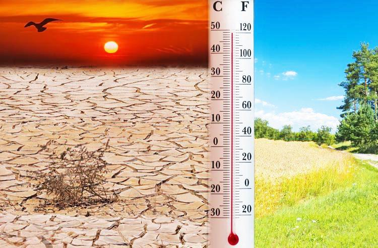 ''Il 2020 è stato l'anno più caldo di sempre in Europa''