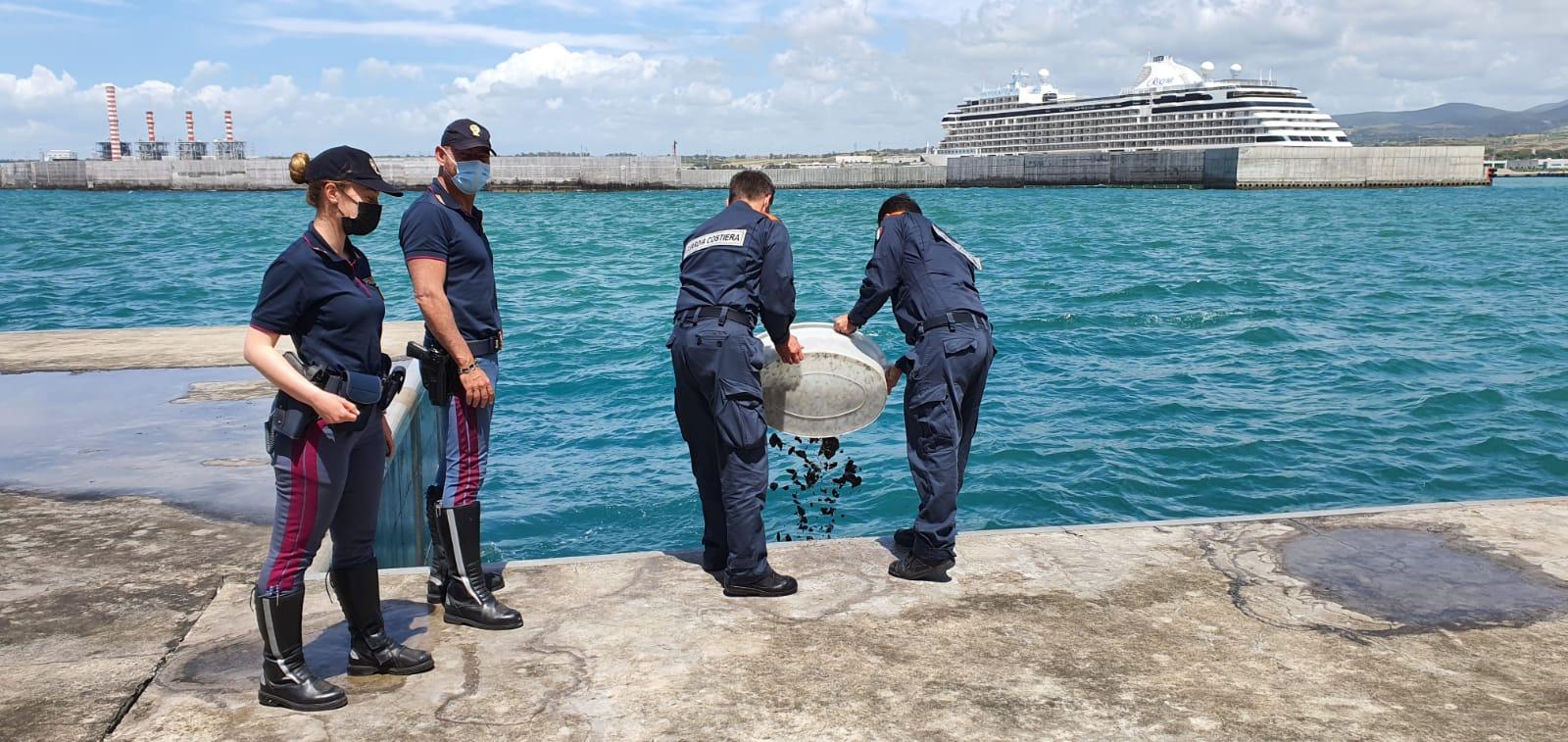 Porto, sequestrati 135 kg di mitili pescati illegalmente