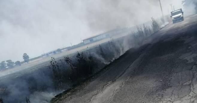 """Incendio a ridosso del """"Da Vinci""""     in fiamme ettari di sterpaglie      in via della Corona Boreale"""