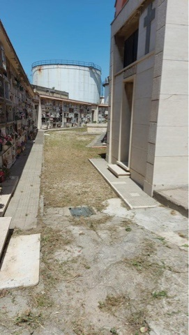 Cimitero monumentale assediato dal degrado