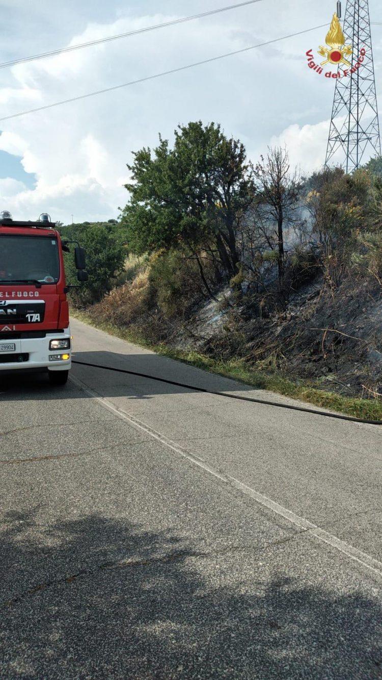 Tre ettari di bosco in fiamme: intervento dei Vigili del fuoco ad Allumiere