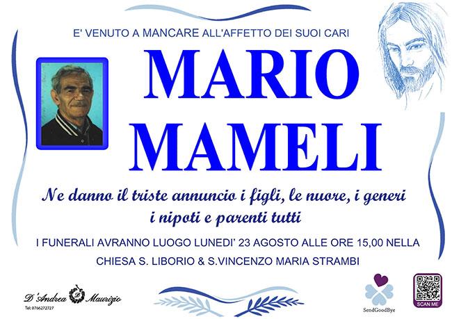 MARIO MAMELI